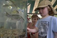 Aquarium_Child_Discovery_Tent_credit_Augusto_F_Menezes